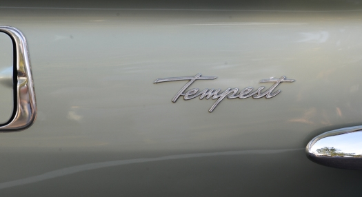 Cruise -2695 tempest logo